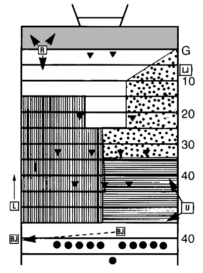5 Person diagram